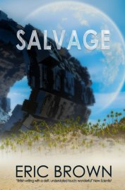 salvage-ebook-cover_600w